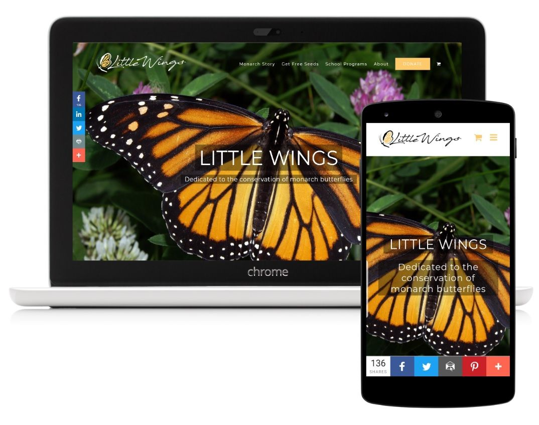 Little-Wings-Website-Portfolio